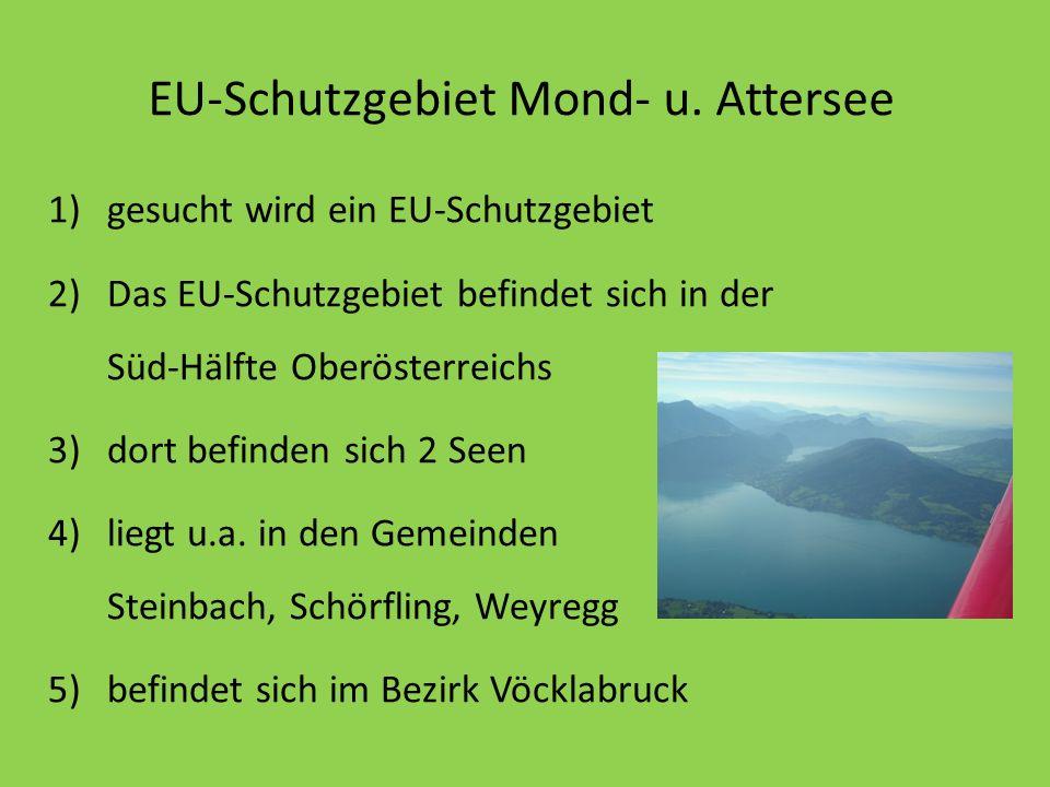 EU-Schutzgebiet Mond- u. Attersee 1)gesucht wird ein EU-Schutzgebiet 2)Das EU-Schutzgebiet befindet sich in der Süd-Hälfte Oberösterreichs 3)dort befi