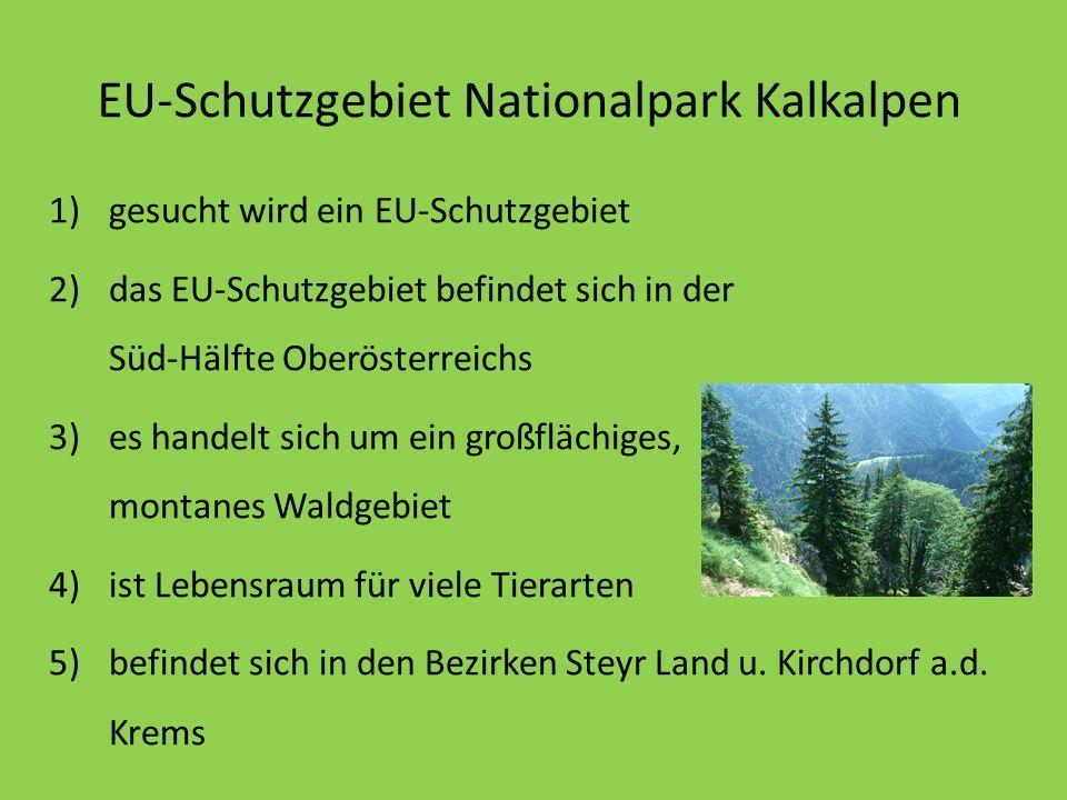 EU-Schutzgebiet Nationalpark Kalkalpen 1)gesucht wird ein EU-Schutzgebiet 2)das EU-Schutzgebiet befindet sich in der Süd-Hälfte Oberösterreichs 3)es h