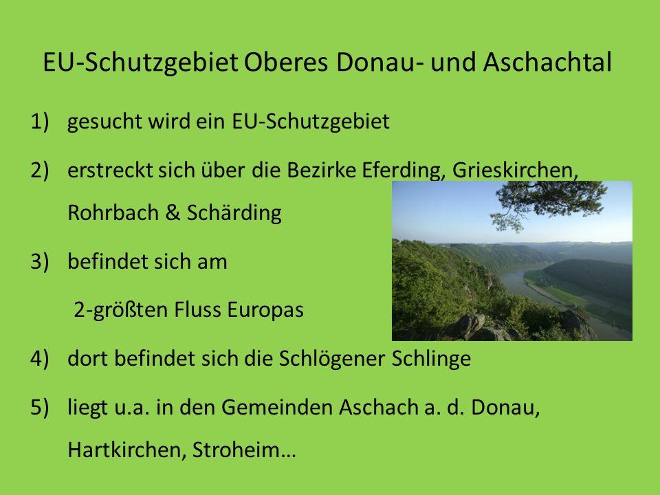 EU-Schutzgebiet Oberes Donau- und Aschachtal 1)gesucht wird ein EU-Schutzgebiet 2)erstreckt sich über die Bezirke Eferding, Grieskirchen, Rohrbach & S