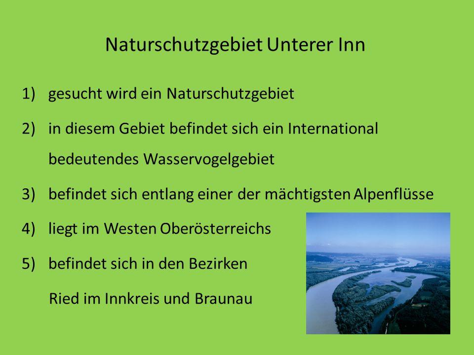 Naturschutzgebiet Unterer Inn 1)gesucht wird ein Naturschutzgebiet 2)in diesem Gebiet befindet sich ein International bedeutendes Wasservogelgebiet 3)