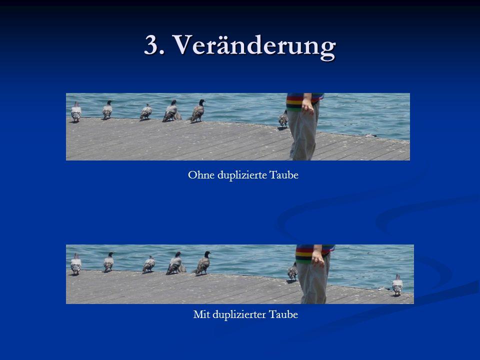 3. Veränderung Mit duplizierter Taube Ohne duplizierte Taube