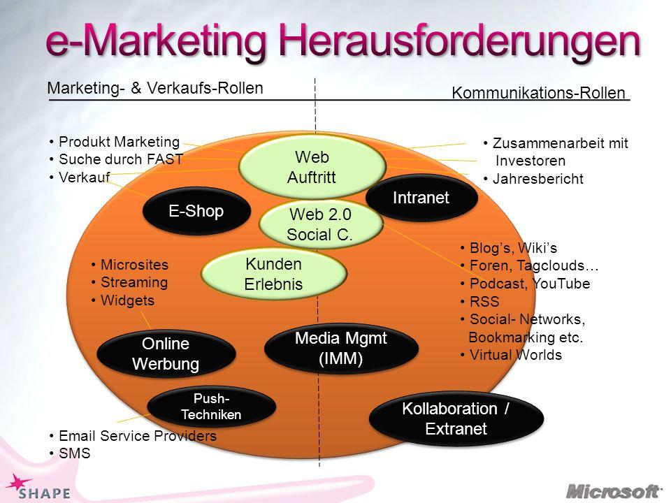 Produkt Marketing Suche durch FAST Verkauf Marketing- & Verkaufs-Rollen Kommunikations-Rollen E-Shop Zusammenarbeit mit Investoren Jahresbericht Intranet Media Mgmt (IMM) Web 2.0 Social C.