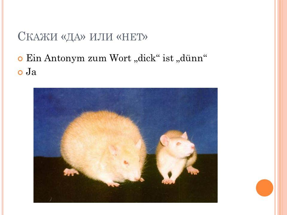 С КАЖИ « ДА » ИЛИ « НЕТ » Ein Antonym zum Wort dick ist dünn Ja
