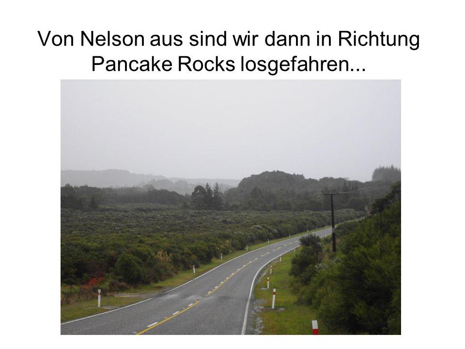 Von Nelson aus sind wir dann in Richtung Pancake Rocks losgefahren...