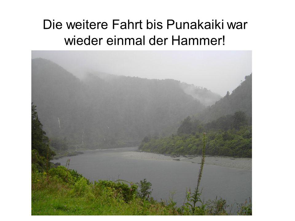 Die weitere Fahrt bis Punakaiki war wieder einmal der Hammer!
