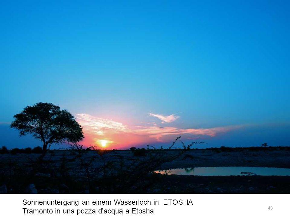 Sonnenuntergang an einem Wasserloch in ETOSHA Tramonto in una pozza d acqua a Etosha 48