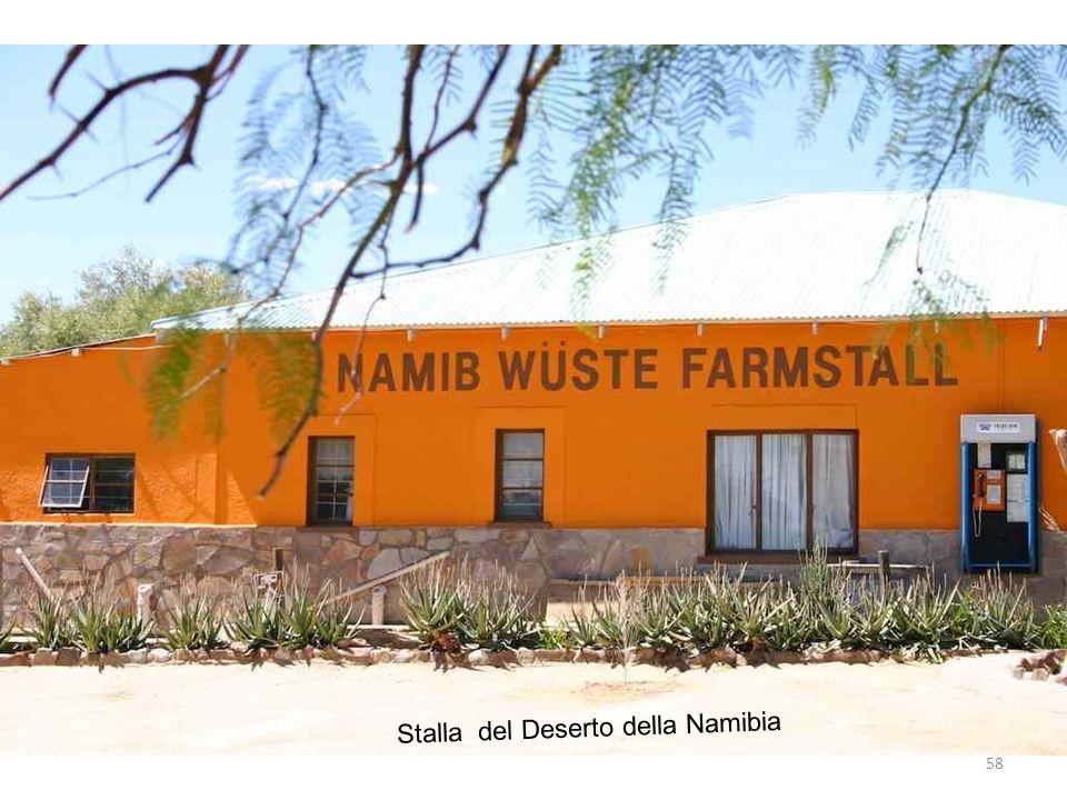 58 Stalla del Deserto della Namibia