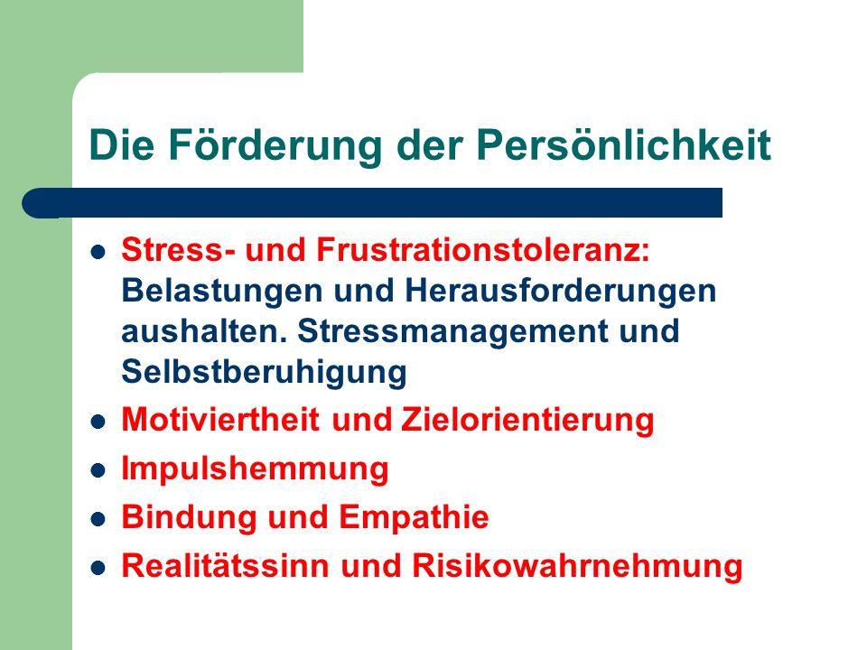 Stress- und Frustrationstoleranz: Belastungen und Herausforderungen aushalten. Stressmanagement und Selbstberuhigung Motiviertheit und Zielorientierun