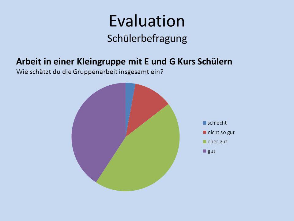 Evaluation Schülerbefragung Arbeit in einer Kleingruppe mit E und G Kurs Schülern Wie schätzt du die Gruppenarbeit insgesamt ein?