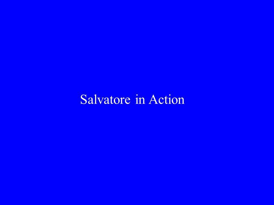 Salvatore in Action