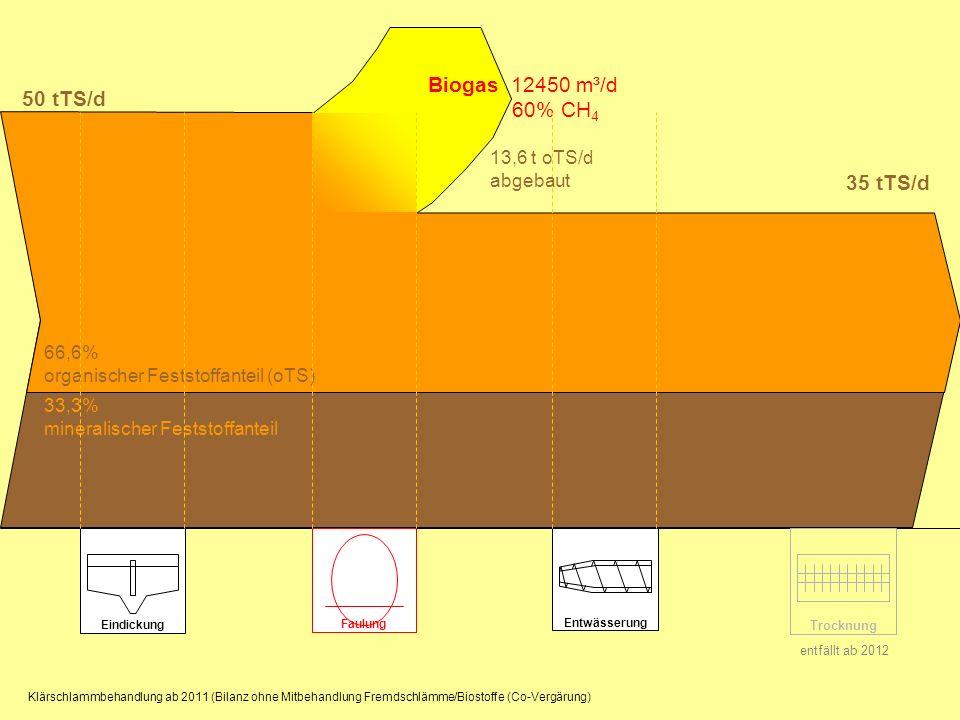 Eindickung Entwässerung Trocknung Biogas 12450 m³/d 60% CH 4 50 tTS/d Faulung 35 tTS/d 66,6% organischer Feststoffanteil (oTS) 33,3% mineralischer Fes