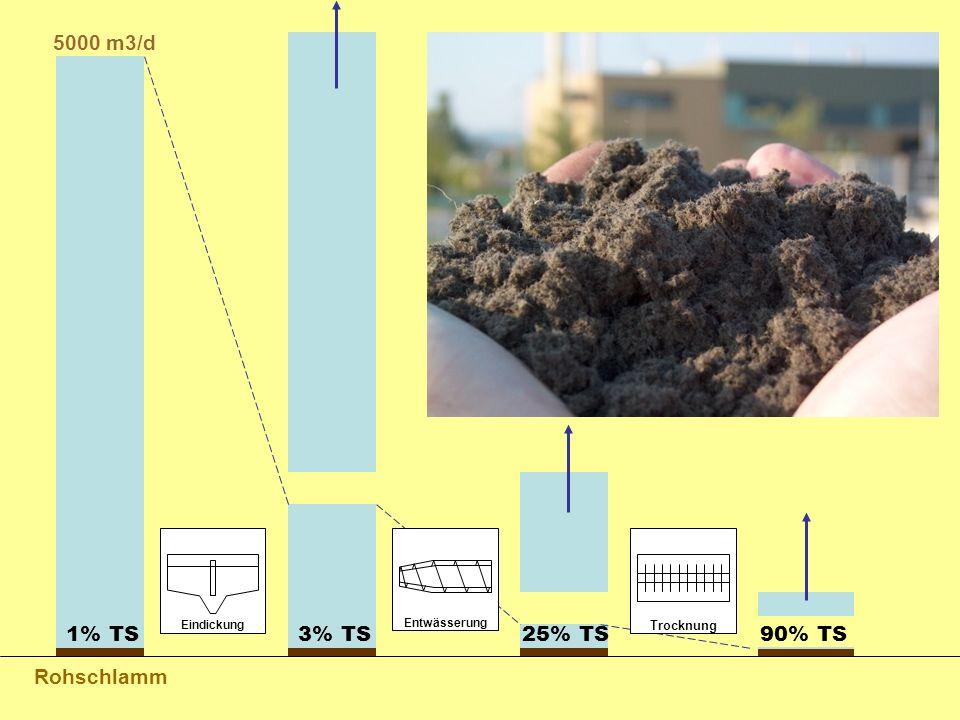 Rohschlamm 1% TS3% TS25% TS90% TS 5000 m3/d Eindickung Entwässerung Trocknung
