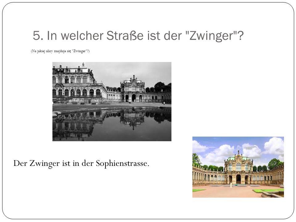 5.In welcher Straße ist der Zwinger .