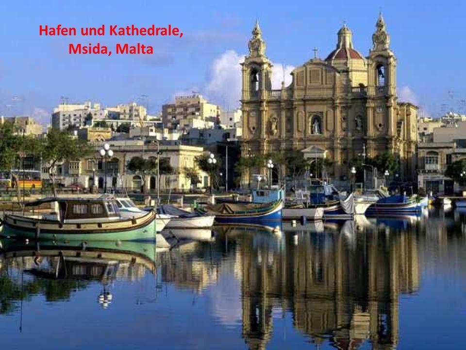 Hafen und Kathedrale, Msida, Malta