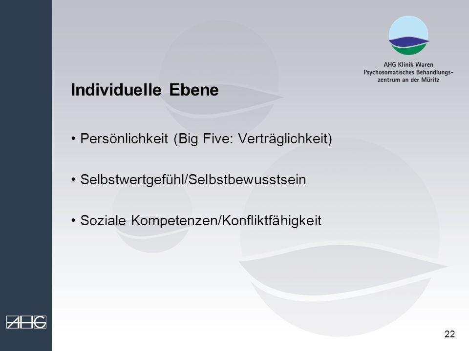 22 Individuelle Ebene Persönlichkeit (Big Five: Verträglichkeit) Selbstwertgefühl/Selbstbewusstsein Soziale Kompetenzen/Konfliktfähigkeit