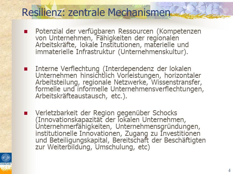 4 Potenzial der verfügbaren Ressourcen (Kompetenzen von Unternehmen, Fähigkeiten der regionalen Arbeitskräfte, lokale Institutionen, materielle und im