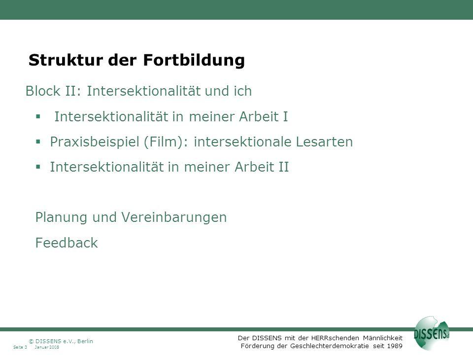 Der DISSENS mit der HERRschenden Männlichkeit Förderung der Geschlechterdemokratie seit 1989 Januar 2008Seite 3 © DISSENS e.V., Berlin Struktur der Fo