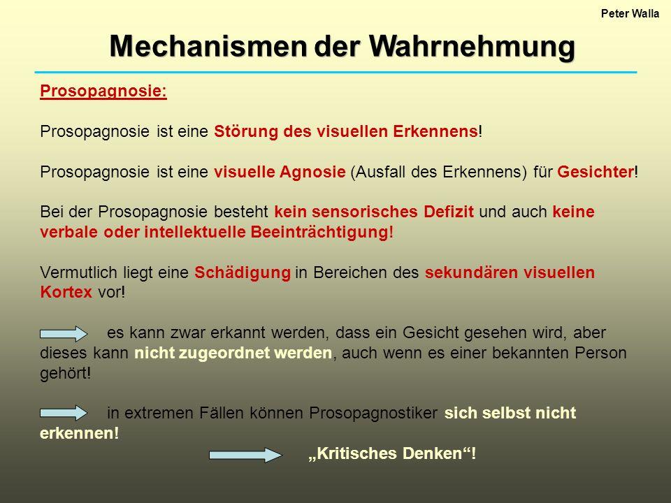 Mechanismen der Wahrnehmung Peter Walla Prosopagnosie: Prosopagnosie ist eine Störung des visuellen Erkennens! Prosopagnosie ist eine visuelle Agnosie