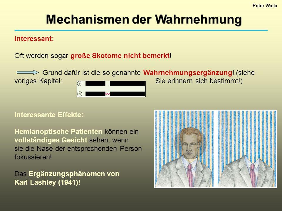Mechanismen der Wahrnehmung Peter Walla Blindsehen (Kortikale Blindheit!): Patienten mit Skotomen können auf Reize, die ihnen im Bereich ihrer Skotome präsentiert werden, reagieren, obwohl sie keine bewusste Wahrnehmung dieser Reize haben.