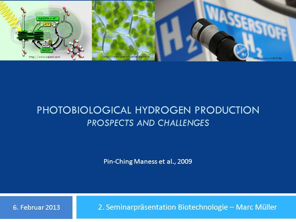 Inhalt 1.Grundlagen Fotosynthetische H 2 -Produktion - warum.