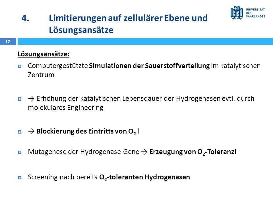 4.Limitierungen auf zellulärer Ebene und Lösungsansätze 17 Lösungsansätze: Computergestützte Simulationen der Sauerstoffverteilung im katalytischen Ze