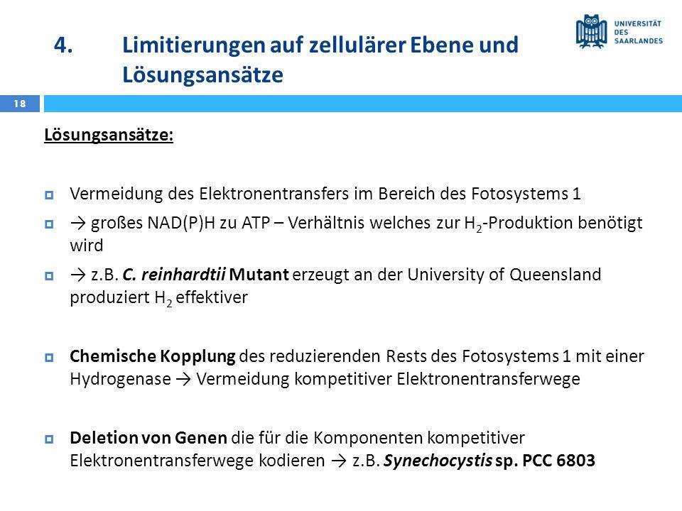 4.Limitierungen auf zellulärer Ebene und Lösungsansätze 18 Lösungsansätze: Vermeidung des Elektronentransfers im Bereich des Fotosystems 1 großes NAD(