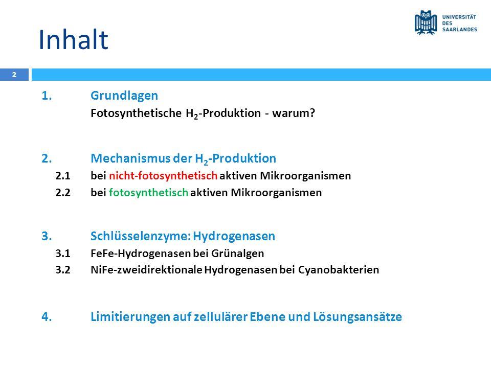 Inhalt 1.Grundlagen Fotosynthetische H 2 -Produktion - warum? 2.Mechanismus der H 2 -Produktion 2.1bei nicht-fotosynthetisch aktiven Mikroorganismen 2