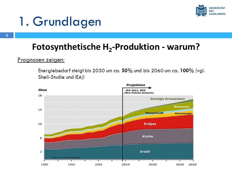 1. Grundlagen Fotosynthetische H 2 -Produktion - warum? Prognosen zeigen: Energiebedarf steigt bis 2030 um ca. 50% und bis 2060 um ca. 100% (vgl. Shel