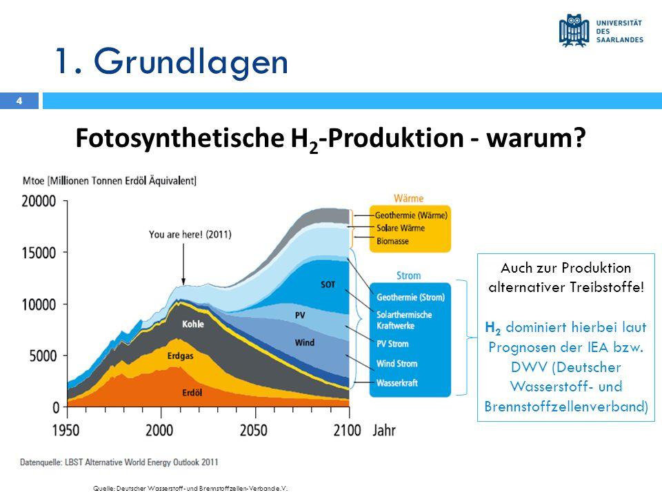 1. Grundlagen Fotosynthetische H 2 -Produktion - warum? 4 http://www.fug-verlag.de Auch zur Produktion alternativer Treibstoffe! H 2 dominiert hierbei