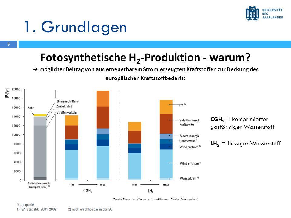 1. Grundlagen Fotosynthetische H 2 -Produktion - warum? möglicher Beitrag von aus erneuerbarem Strom erzeugten Kraftstoffen zur Deckung des europäisch
