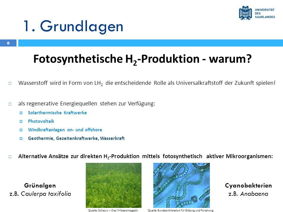 1. Grundlagen Fotosynthetische H 2 -Produktion - warum? Wasserstoff wird in Form von LH 2 die entscheidende Rolle als Universalkraftstoff der Zukunft