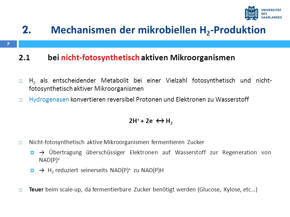 2. Mechanismen der mikrobiellen H 2 -Produktion 7 2.1bei nicht-fotosynthetisch aktiven Mikroorganismen H 2 als entscheidender Metabolit bei einer Viel