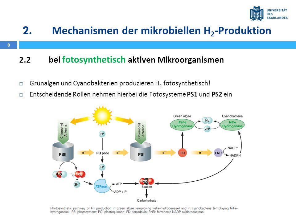 8 2.2bei fotosynthetisch aktiven Mikroorganismen Grünalgen und Cyanobakterien produzieren H 2 fotosynthetisch! Entscheidende Rollen nehmen hierbei die
