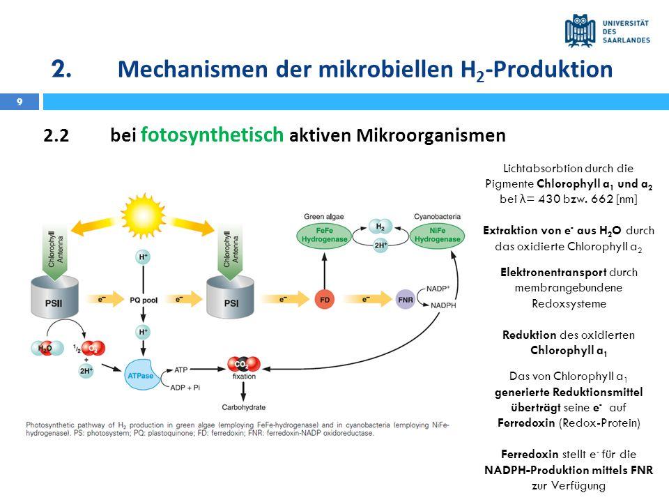 10 2.2bei fotosynthetisch aktiven Mikroorganismen Ferredoxin stellt e - für die NADPH-Produktion mittels FNR zur Verfügung NADPH und ATP benötigt zur Kohlenhydratsynthese im Calvin-Benson-Zyklus Bei Abwesenheit von CO 2 und bei anaeroben Bedingungen erfolgt die Übertragung der e - von Ferredoxin oder NADPH auf Protonen, katalysiert durch Hydrogenasen 2H + + 2e - H 2 2.