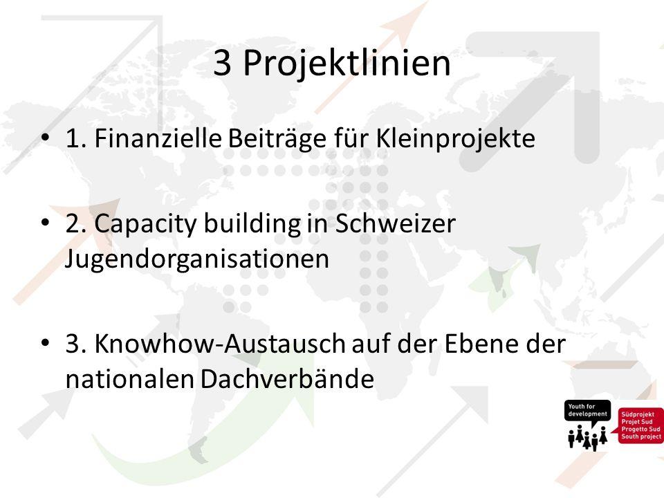 3 Projektlinien 1. Finanzielle Beiträge für Kleinprojekte 2.