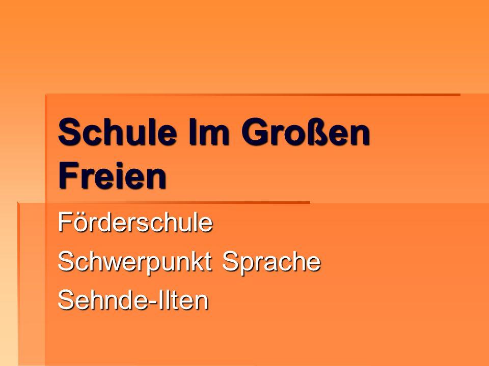 Schule Im Großen Freien Förderschule Schwerpunkt Sprache Sehnde-Ilten