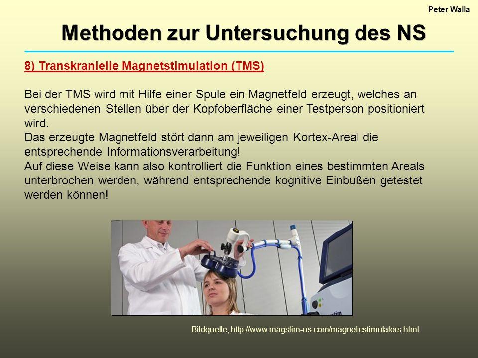 Peter Walla Methoden zur Untersuchung des NS 8) Transkranielle Magnetstimulation (TMS) Bei der TMS wird mit Hilfe einer Spule ein Magnetfeld erzeugt, welches an verschiedenen Stellen über der Kopfoberfläche einer Testperson positioniert wird.