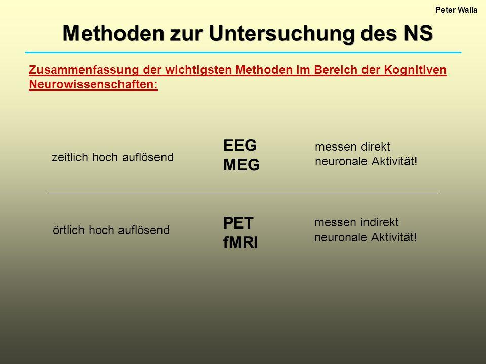 Peter Walla Methoden zur Untersuchung des NS Zusammenfassung der wichtigsten Methoden im Bereich der Kognitiven Neurowissenschaften: EEG MEG PET fMRI