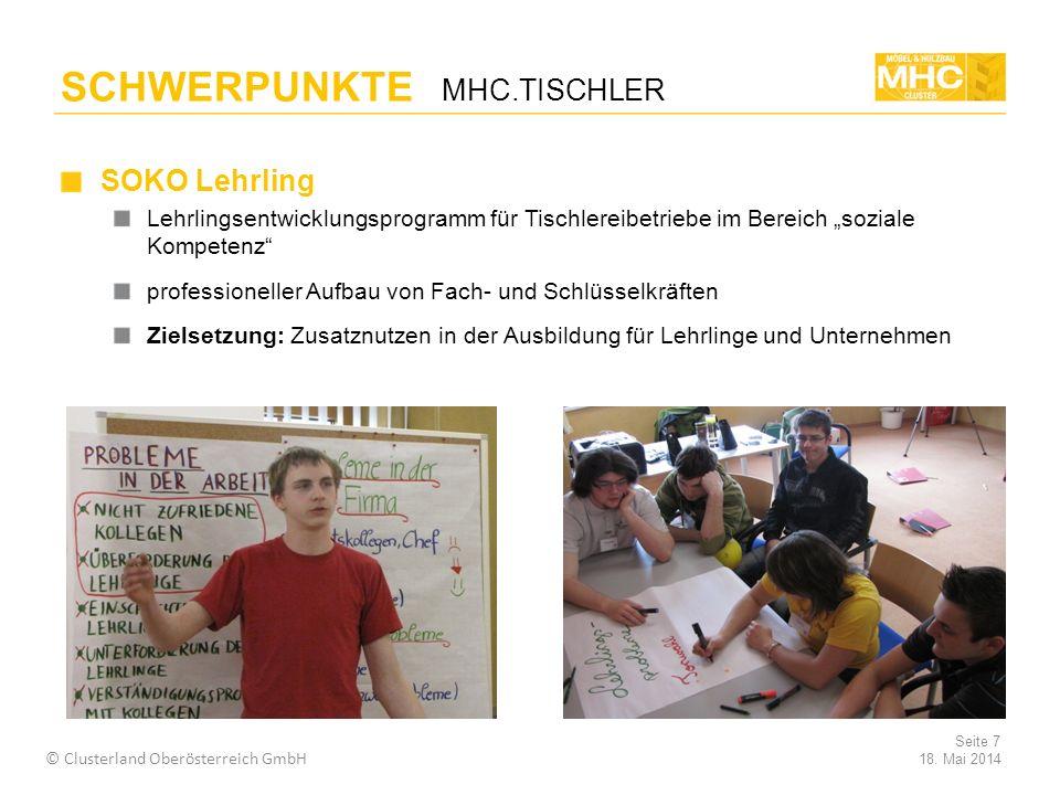 SOKO Lehrling Lehrlingsentwicklungsprogramm für Tischlereibetriebe im Bereich soziale Kompetenz professioneller Aufbau von Fach- und Schlüsselkräften Zielsetzung: Zusatznutzen in der Ausbildung für Lehrlinge und Unternehmen 18.