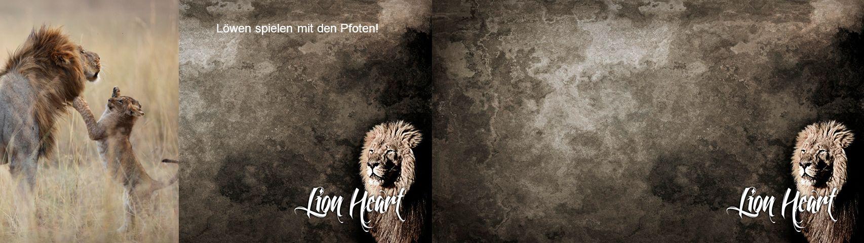 Löwen spielen mit den Pfoten!