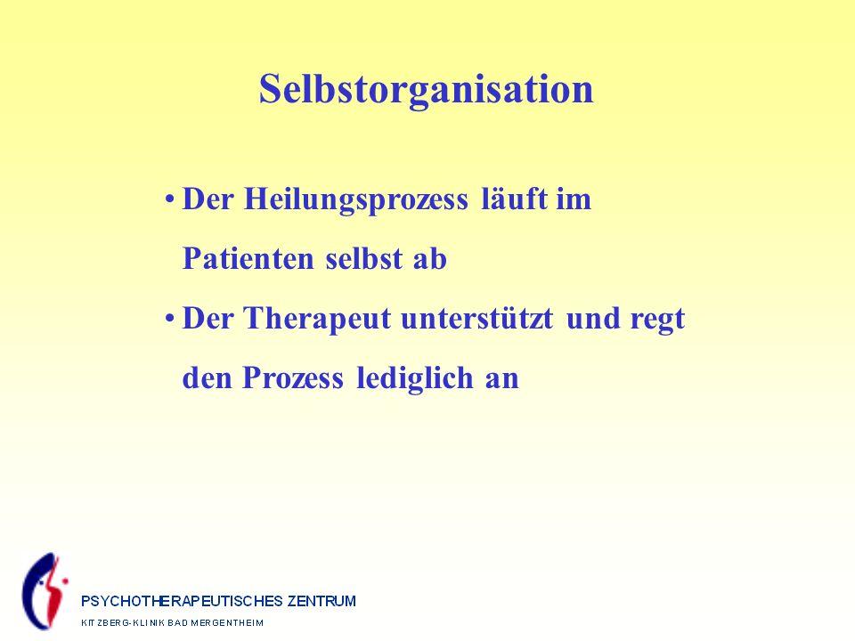 Selbstorganisation Der Heilungsprozess läuft im Patienten selbst ab Der Therapeut unterstützt und regt den Prozess lediglich an