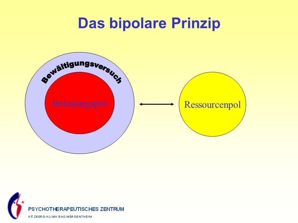 Ressourcenpol Belastungspol Das bipolare Prinzip