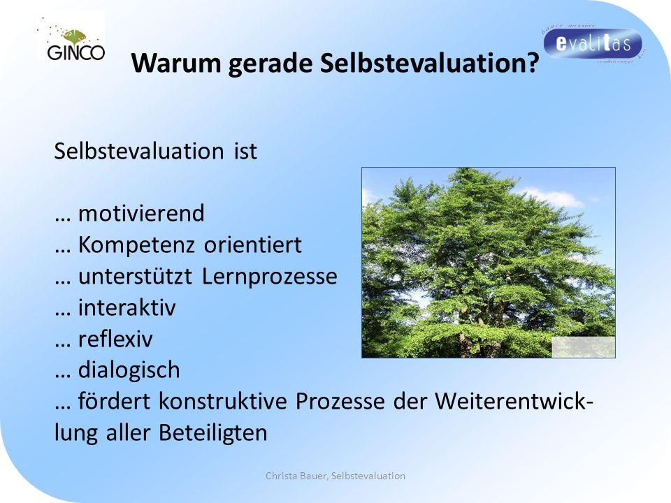 Warum gerade Selbstevaluation? Christa Bauer, Selbstevaluation Selbstevaluation ist … motivierend … Kompetenz orientiert … unterstützt Lernprozesse …
