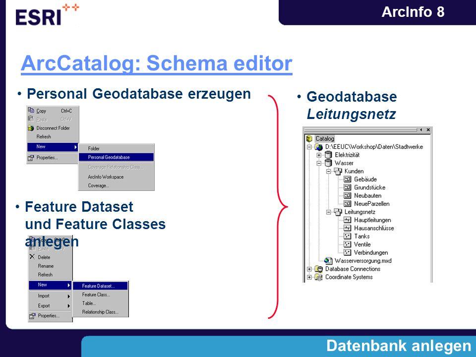 ArcInfo 8 Datenbank anlegen ArcCatalog: Schema editor Personal Geodatabase erzeugen Feature Dataset und Feature Classes anlegen Geodatabase Leitungsne
