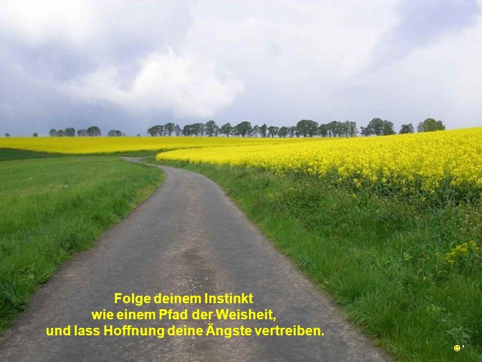 Folge deinem Instinkt wie einem Pfad der Weisheit, und lass Hoffnung deine Ängste vertreiben.