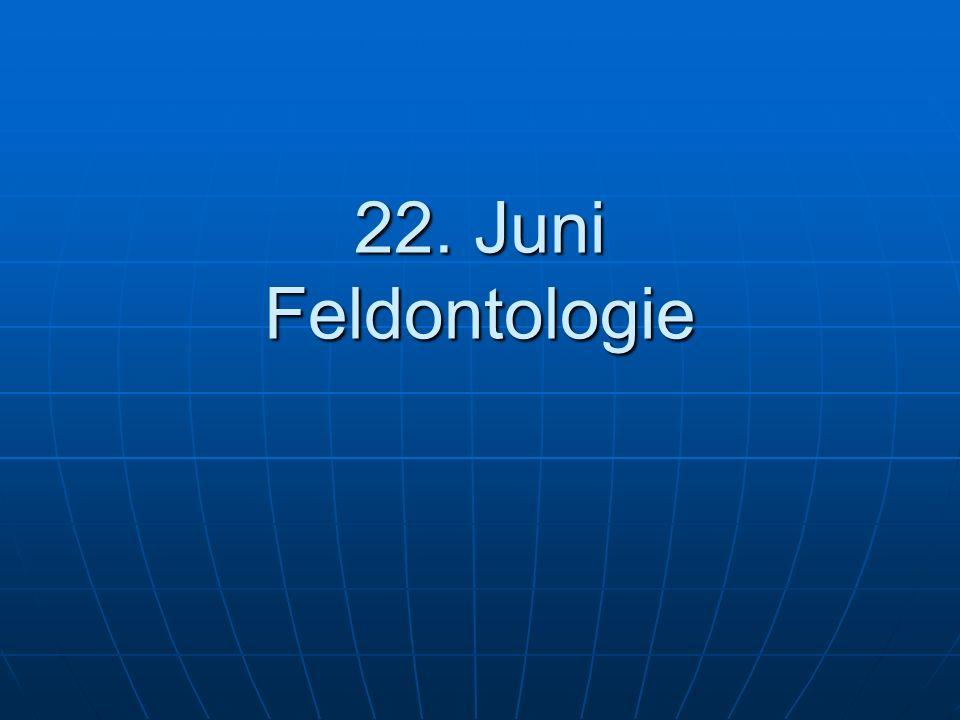 22. Juni Feldontologie