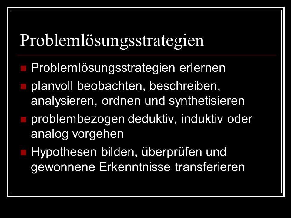Problemlösungsstrategien Problemlösungsstrategien erlernen planvoll beobachten, beschreiben, analysieren, ordnen und synthetisieren problembezogen ded
