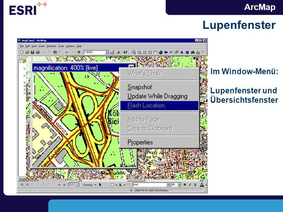 ArcMap Lupenfenster Im Window-Menü: Lupenfenster und Übersichtsfenster