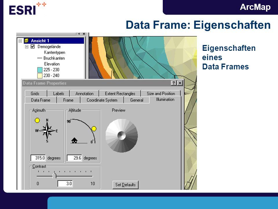 ArcMap Data Frame: Eigenschaften Eigenschaften eines Data Frames
