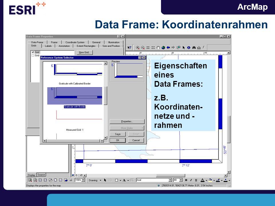 ArcMap Data Frame: Koordinatenrahmen Eigenschaften eines Data Frames: z.B. Koordinaten- netze und - rahmen